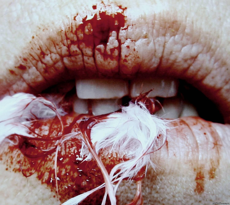 Рвут в кровь 13 фотография